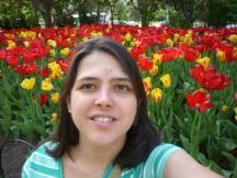 As tulipas